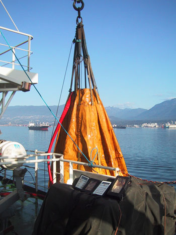 Marine Surveys & Audits